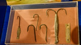 Hooks for fishing by lines.
