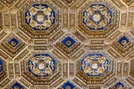 Palazzo Vecchio - Ceiling