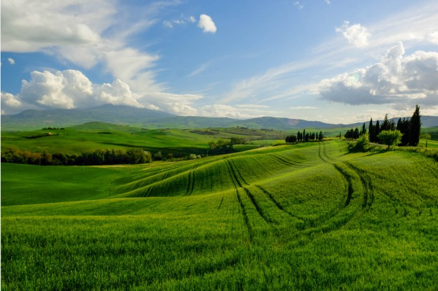 """Val D'Orcia, """"The Gladiator"""" movie location"""