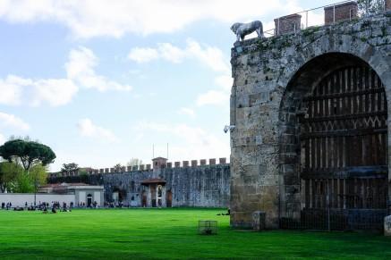 Pisa Walls