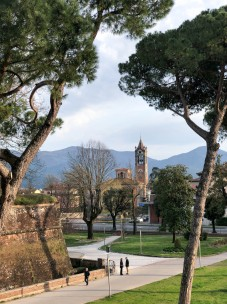 2019March-Lucca D2-3399
