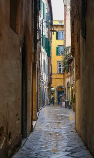2019March-Lucca-D3-7663
